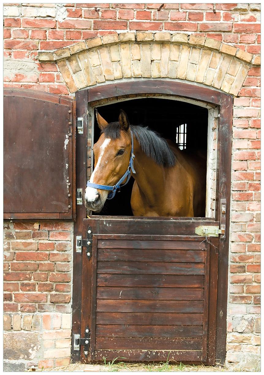 Wandbild Pferd im Stall – Bild 1