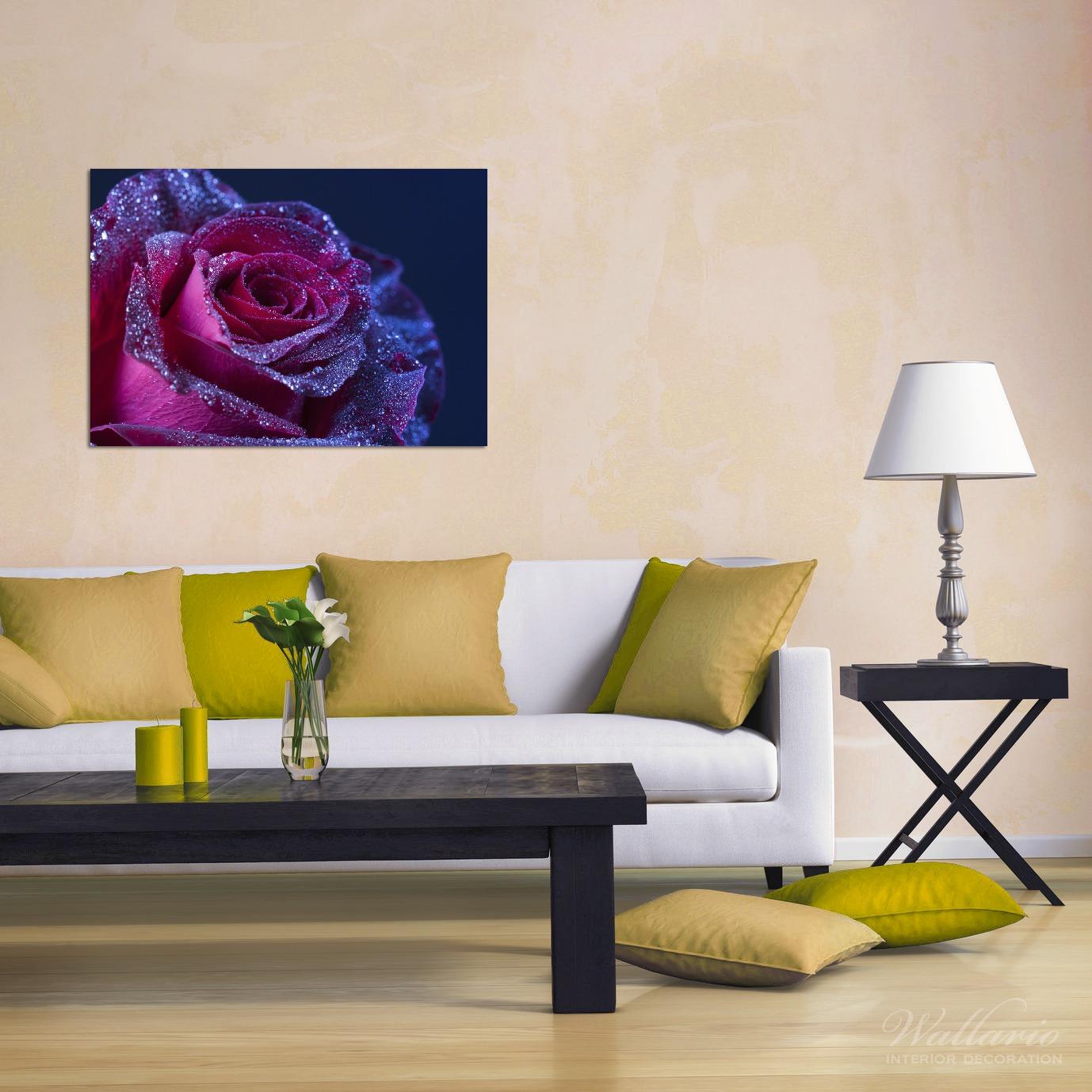Wandbild Rote Rosenblüte im Regen – Bild 2