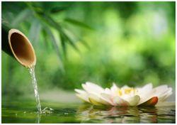 Wandbild Seerosen und Bambus auf dem Wasser – Bild 1