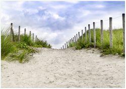 Wandbild Auf dem Weg zum Strand durch Dünen – Bild 1