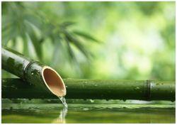 Wandbild Bambusquelle  Bambusrohr mit Wasser – Bild 1