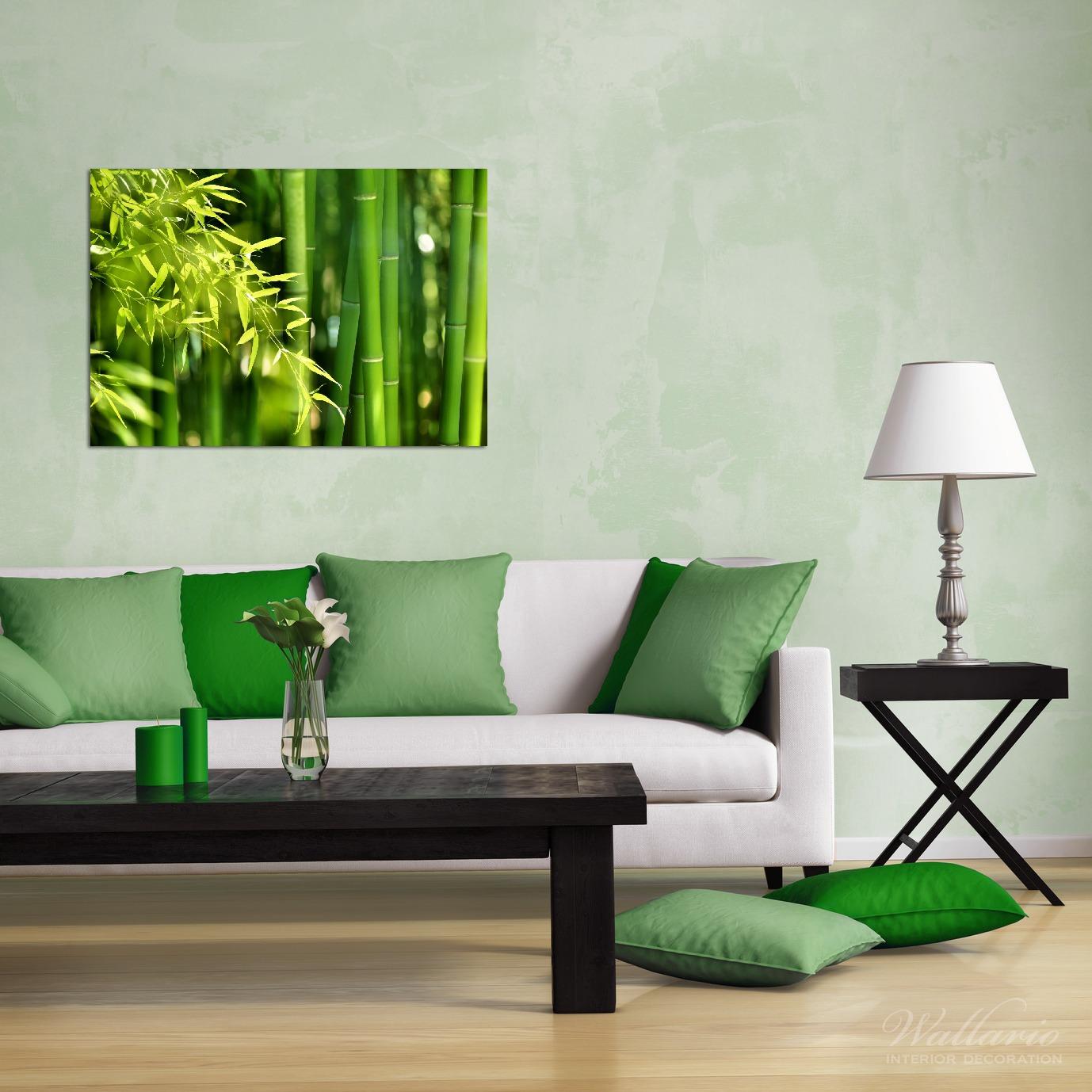 Wandbild Bambuswald mit grünen Bambuspflanzen – Bild 2