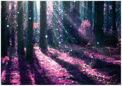 Wandbild Fantasie im Wald - Pinke Blumen in der Sonne – Bild 1
