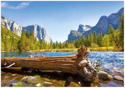 Wandbild Baumstamm im Fluss zwischen Bergen und Wäldern – Bild 1
