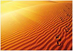 Wandbild Fußspuren im Sand - Sanddüne in der Wüste – Bild 1