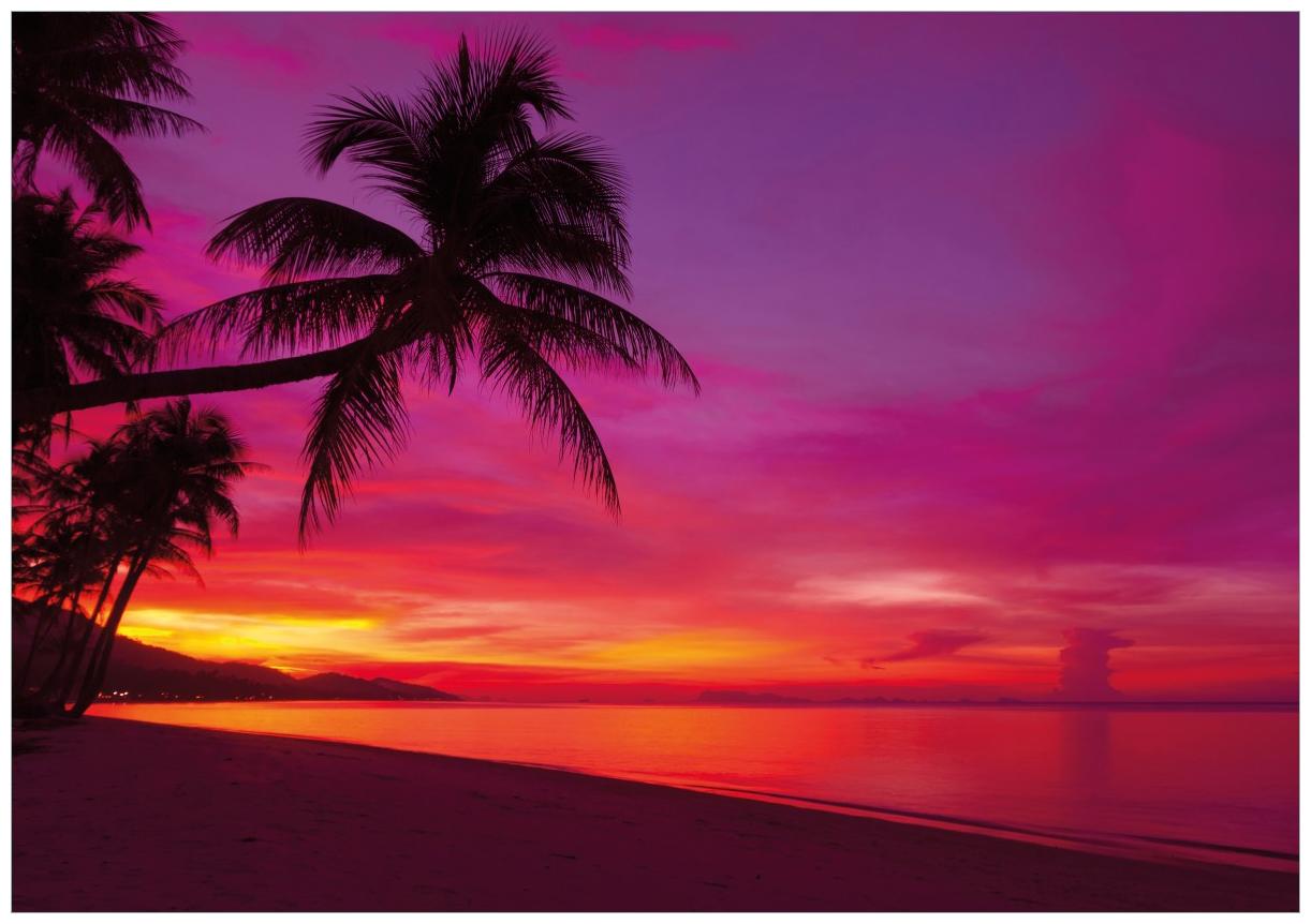 Wandbild Abendrot unter Palmen - pinker Himmel am Strand – Bild 1