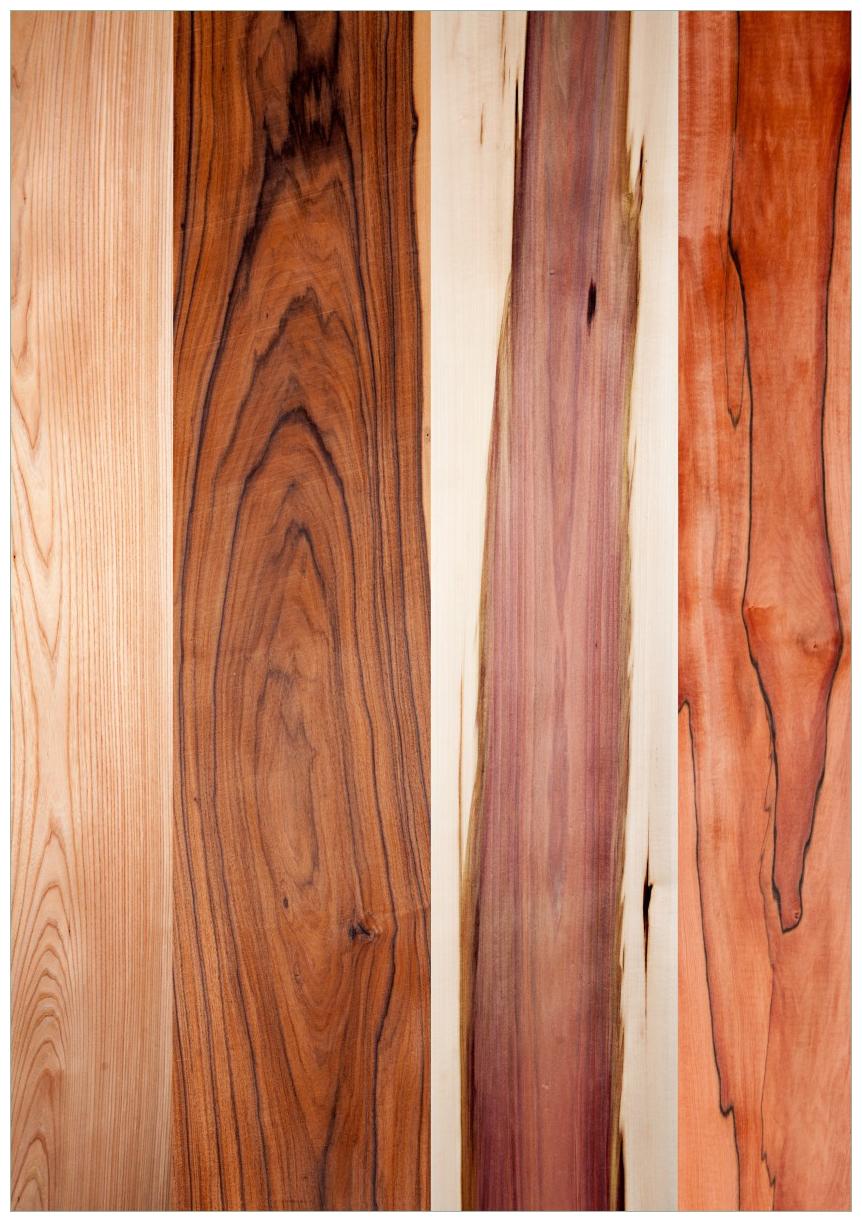 Wandbild Holzmuster - Oberfläche mit Holzmaserung VIII – Bild 1