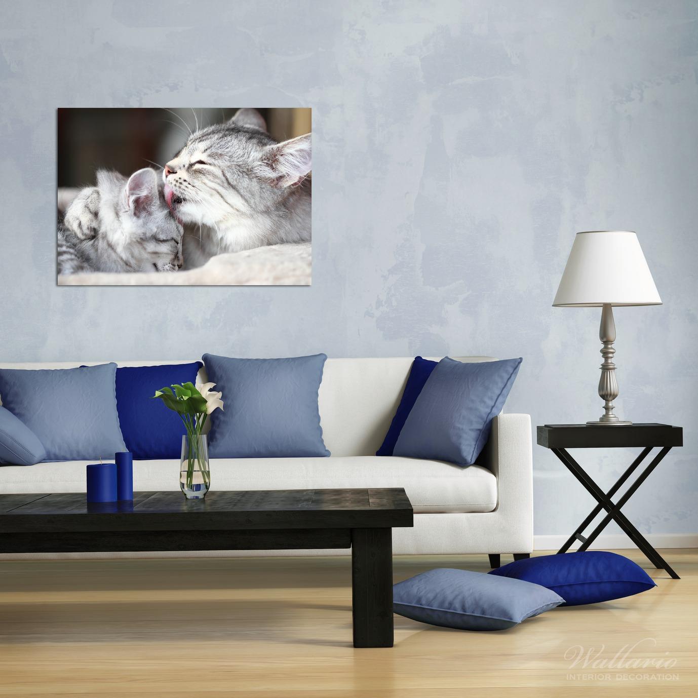 Wandbild Süße kleine getigerte Katzenbabys – Bild 2