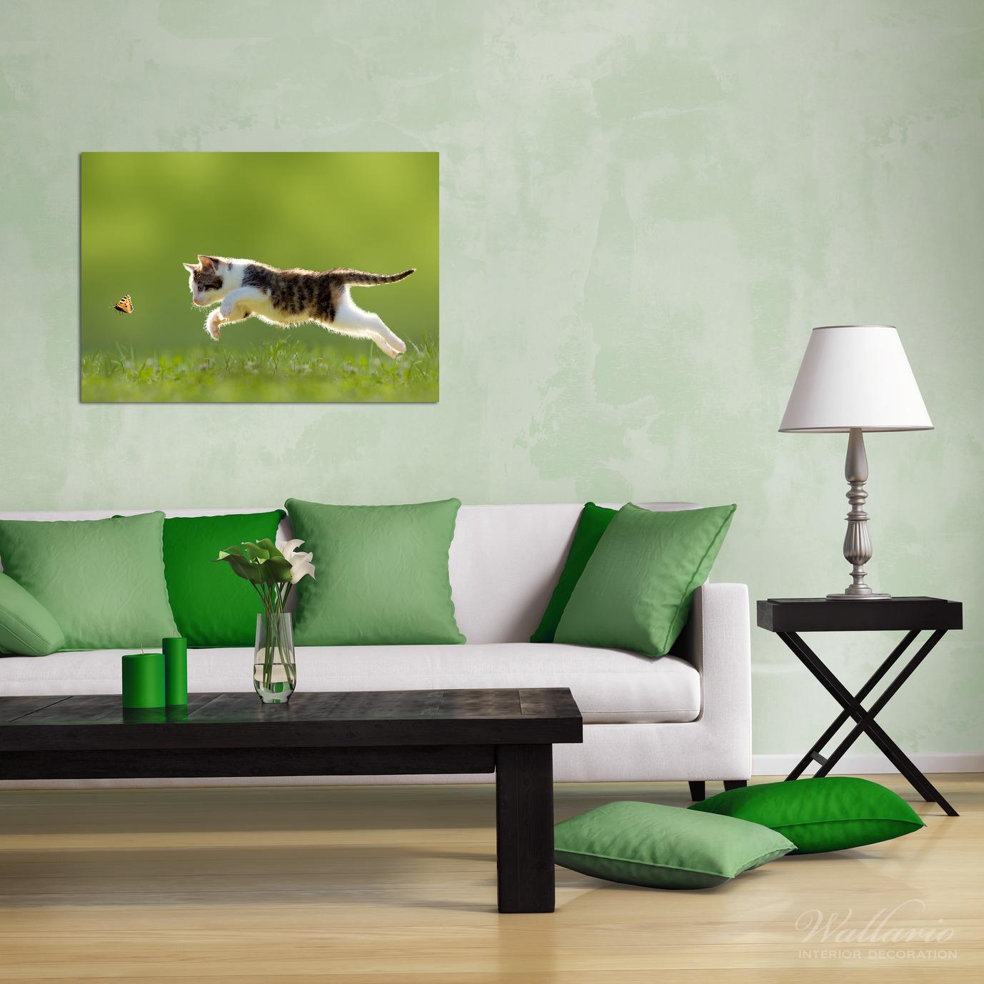 Wandbild Süße Katze fängt Schmetterling im Grünen – Bild 2