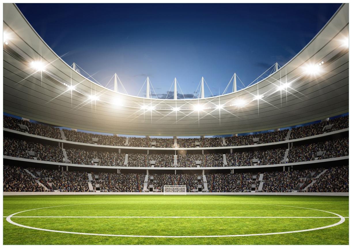 Wandbild Fußballstadion Mittellinie – Bild 1