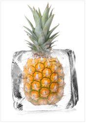 Wandbild Ananas in Eiswürfel - Eiskaltes Obst – Bild 1