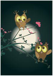 Wandbild Süße verliebte Eulen auf dem Ast bei Nacht im Mondschein – Bild 1