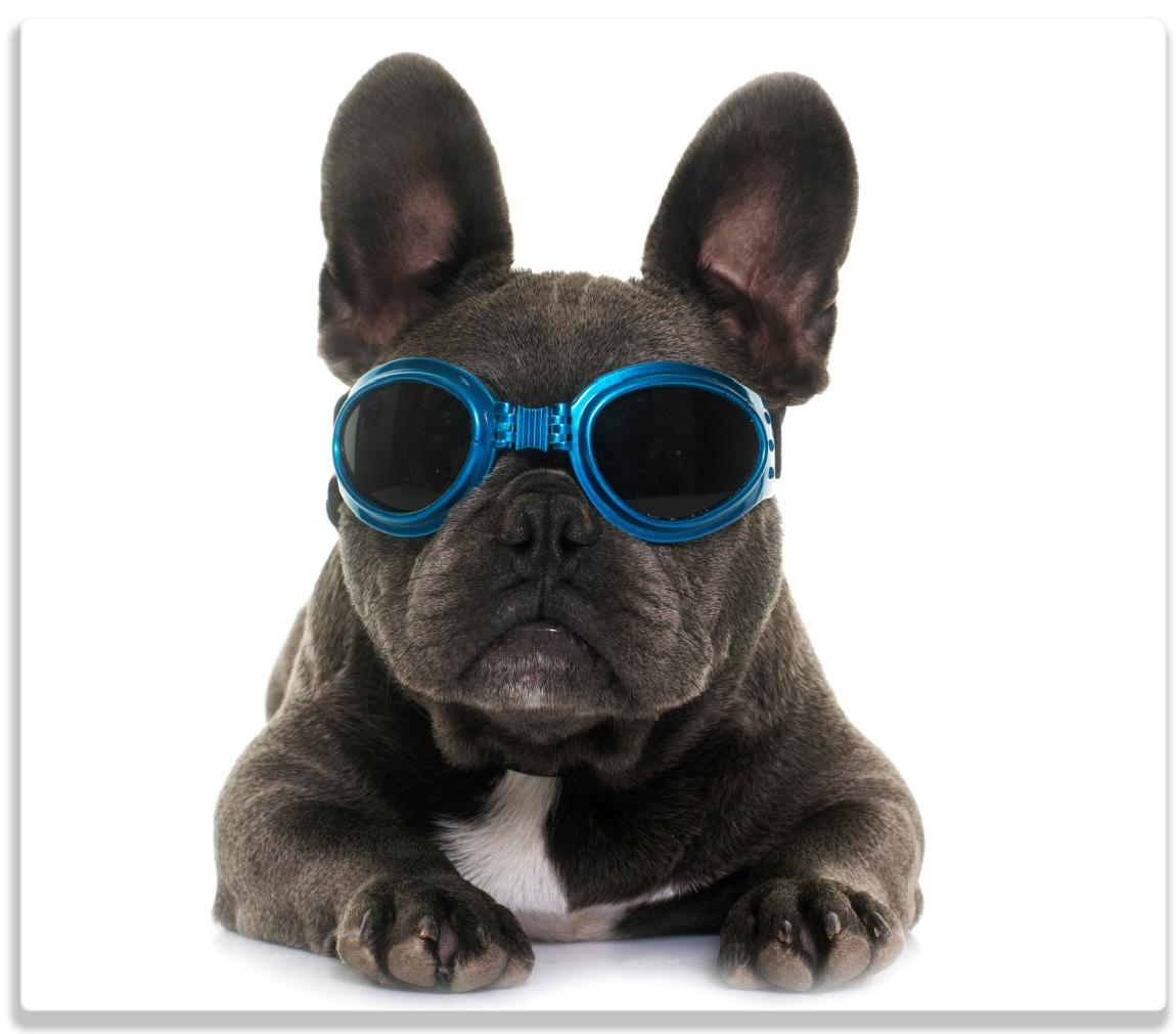 Herdabdeckplatte Cooler Hund mit Sonnenbrille in blau - Französische Bulldogge – Bild 1