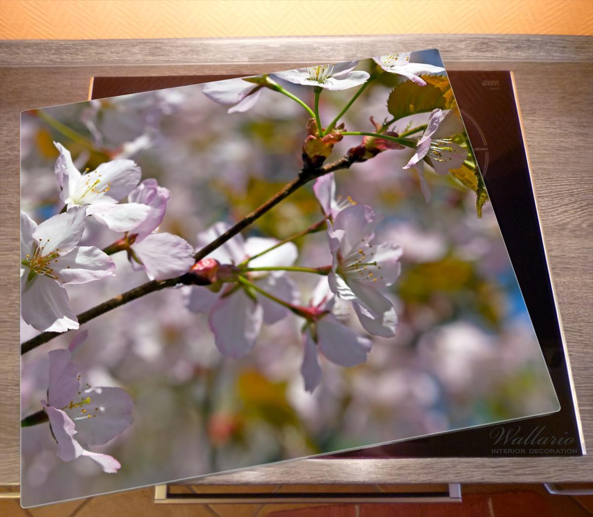 Herdabdeckplatte Kirschblüten in zartem Rosa - Frühling im Garten – Bild 2