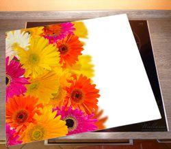 Herdabdeckplatte Bunte Gerberas vor weißem Hintergrund - pinke, gelbe, rote und weiße Blüten – Bild 2