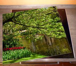 Herdabdeckplatte Bunte Blumen im Park am Wasser - Frühblüher am Ufer – Bild 2