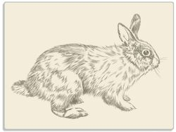 Glasunterlage Hase als illustrierte Bleistiftzeichnung – Bild 1