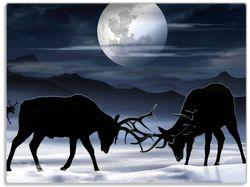 Glasunterlage Elch im Schnee bei Mondschein - Silhouette am Abend – Bild 1