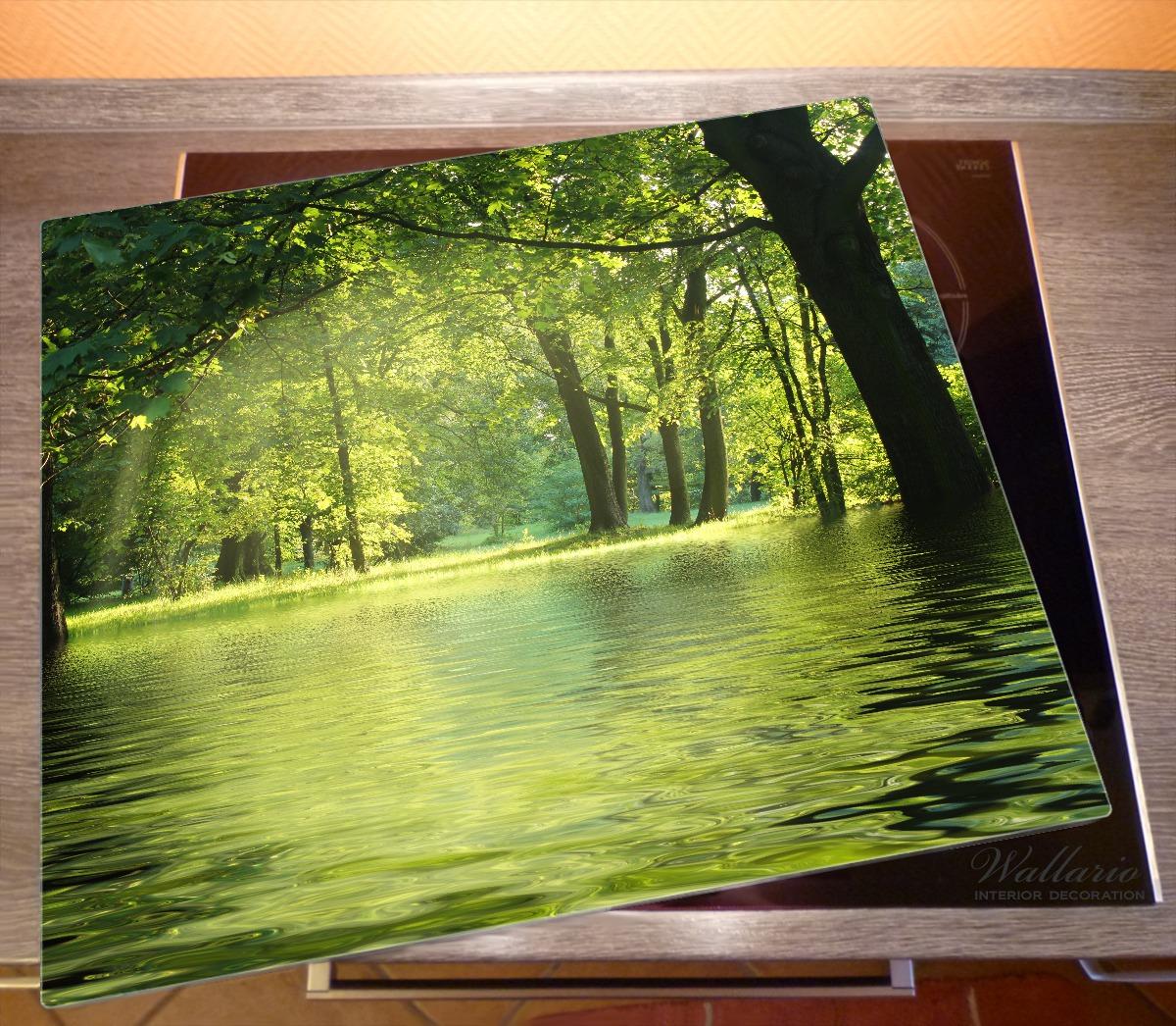 Herdabdeckplatte Idyllischer See im Wald bei Sonnenschein – Bild 2