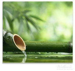 Herdabdeckplatte Bambusquelle  Bambusrohr mit Wasser – Bild 1