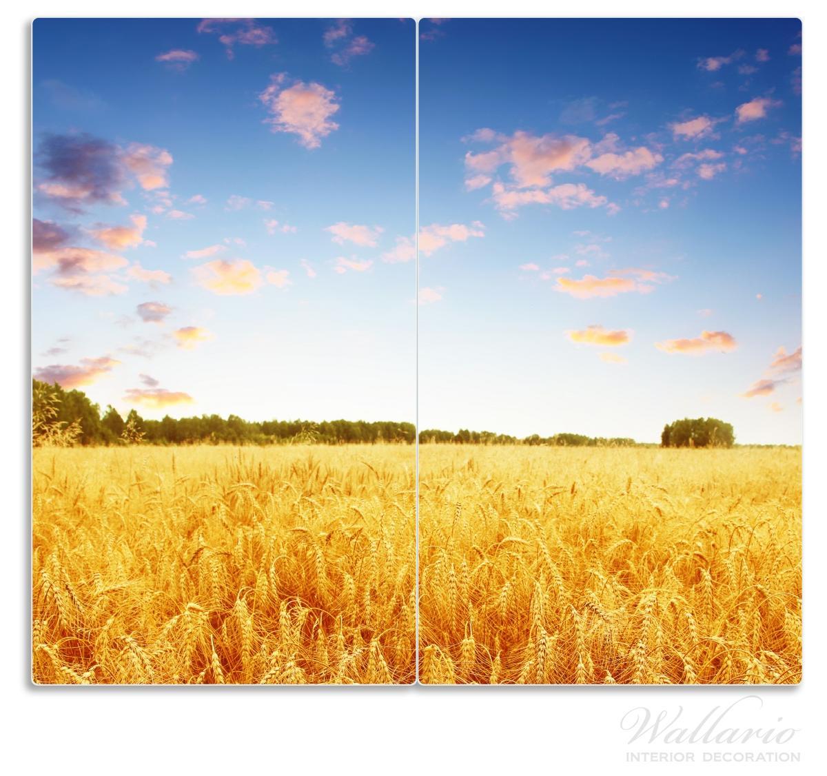 Herdabdeckplatte Weizenfeld unter blauem Himmel – Bild 1