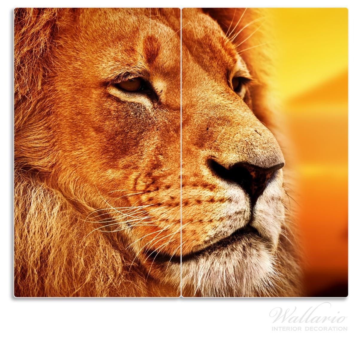 Herdabdeckplatte Prächtiger Löwe in der Savanne – Bild 1
