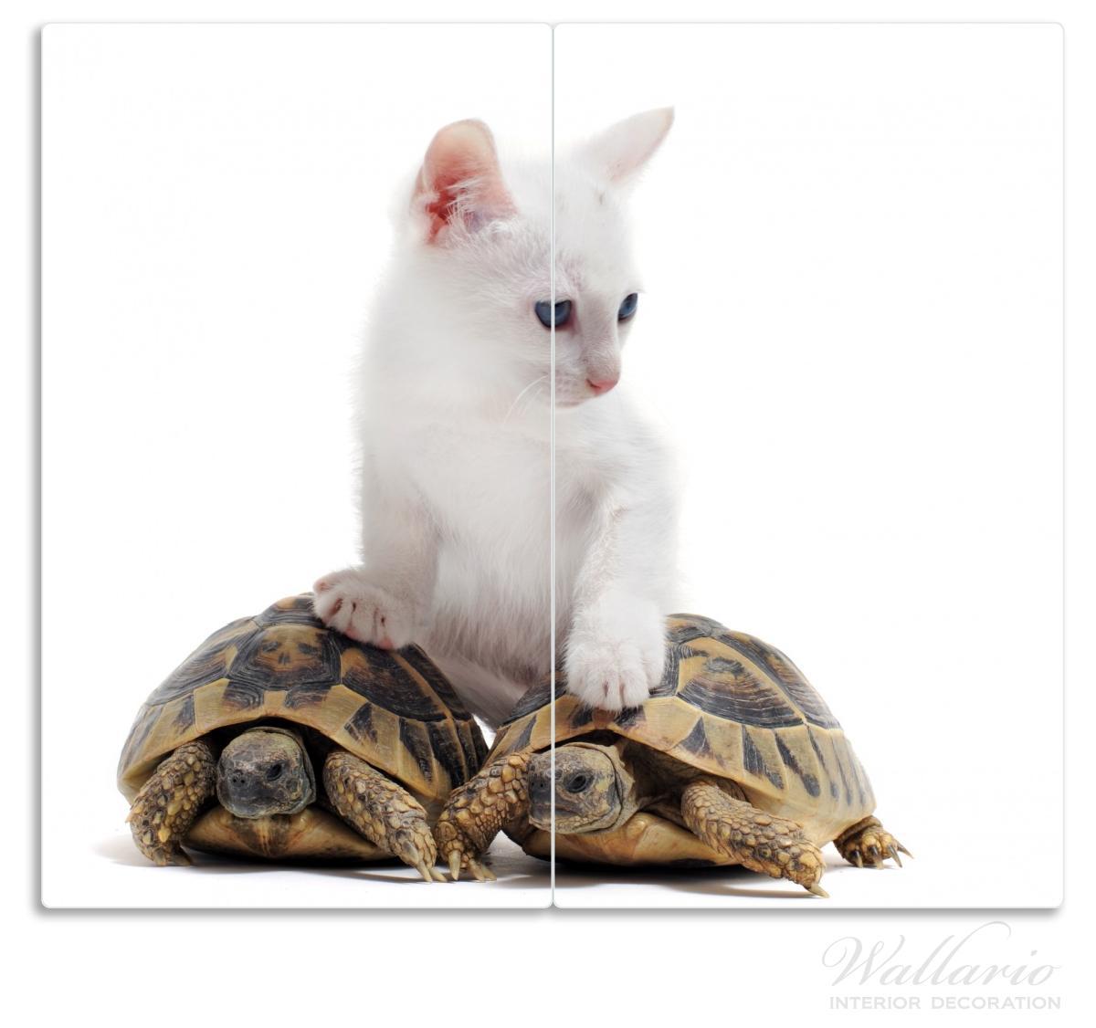 Herdabdeckplatte Katze auf Schildkröten – Bild 1
