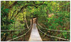 Herdabdeckplatte Hängebrücke im Urwald  grüner Dschungel – Bild 1