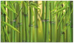 Herdabdeckplatte Grüner Bambuswald – Bild 1