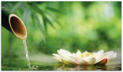 Herdabdeckplatte Seerosen und Bambus auf dem Wasser – Bild 1
