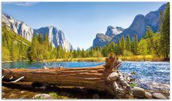 Herdabdeckplatte Baumstamm im Fluss zwischen Bergen und Wäldern – Bild 1