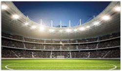 Herdabdeckplatte Fußballstadion Mittellinie – Bild 1