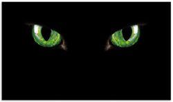 Herdabdeckplatte Grüne Katzenaugen bei Nacht – Bild 1