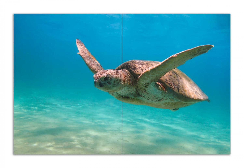 Herdabdeckplatte Meeresschildkröte – Bild 1