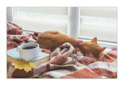 Herdabdeckplatte Schlafende Katze beim Kaffeekränzchen – Bild 1