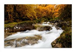 Herdabdeckplatte Fließender Bach im Herbstwald – Bild 1