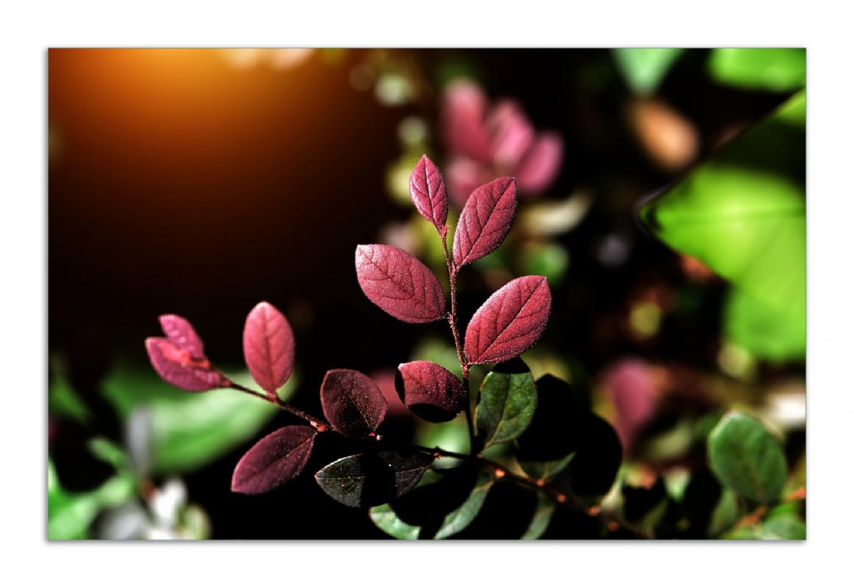 Herdabdeckplatte Rote und grüne Blätter an einem Zweig – Bild 1