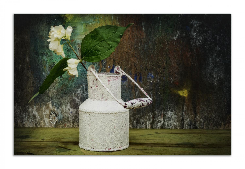Herdabdeckplatte Jasmin Blumen in einer alten Milchkanne – Bild 1