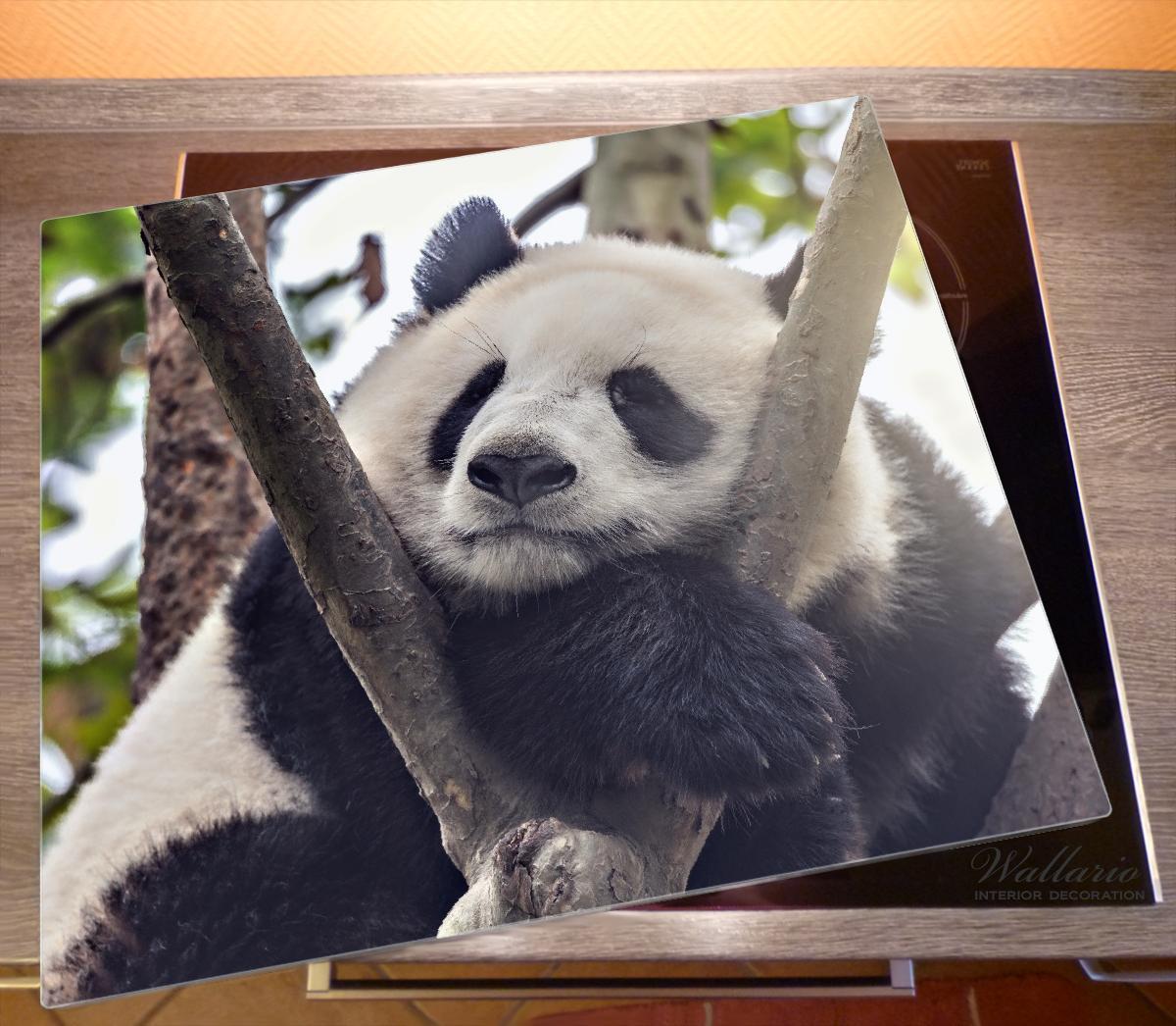 Herdabdeckplatte Schlafender Panda in einem Baum – Bild 2