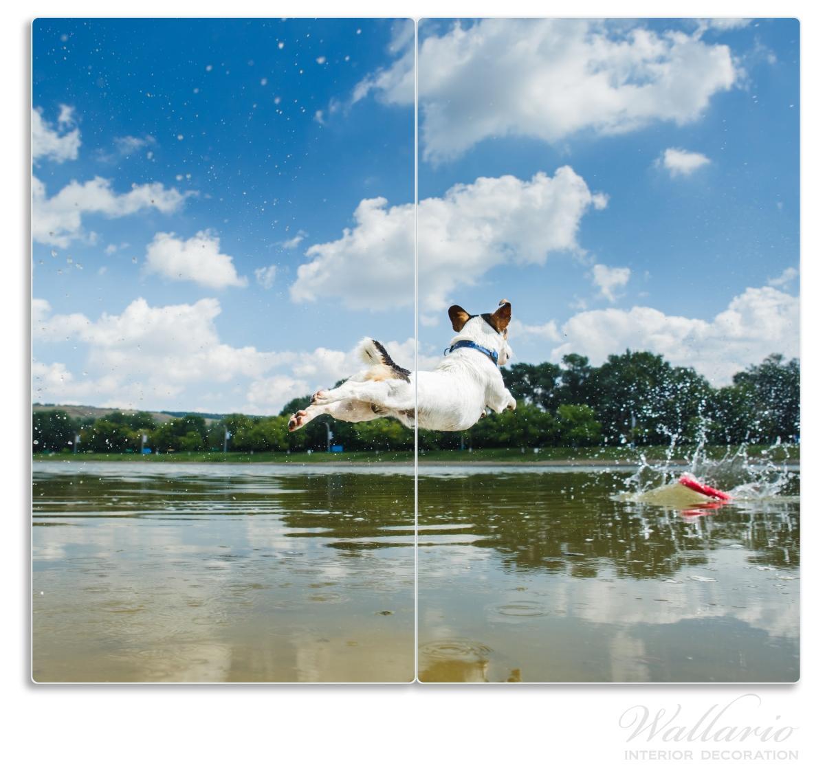 Herdabdeckplatte Jack Russel Terrier im Wasser  – Bild 1