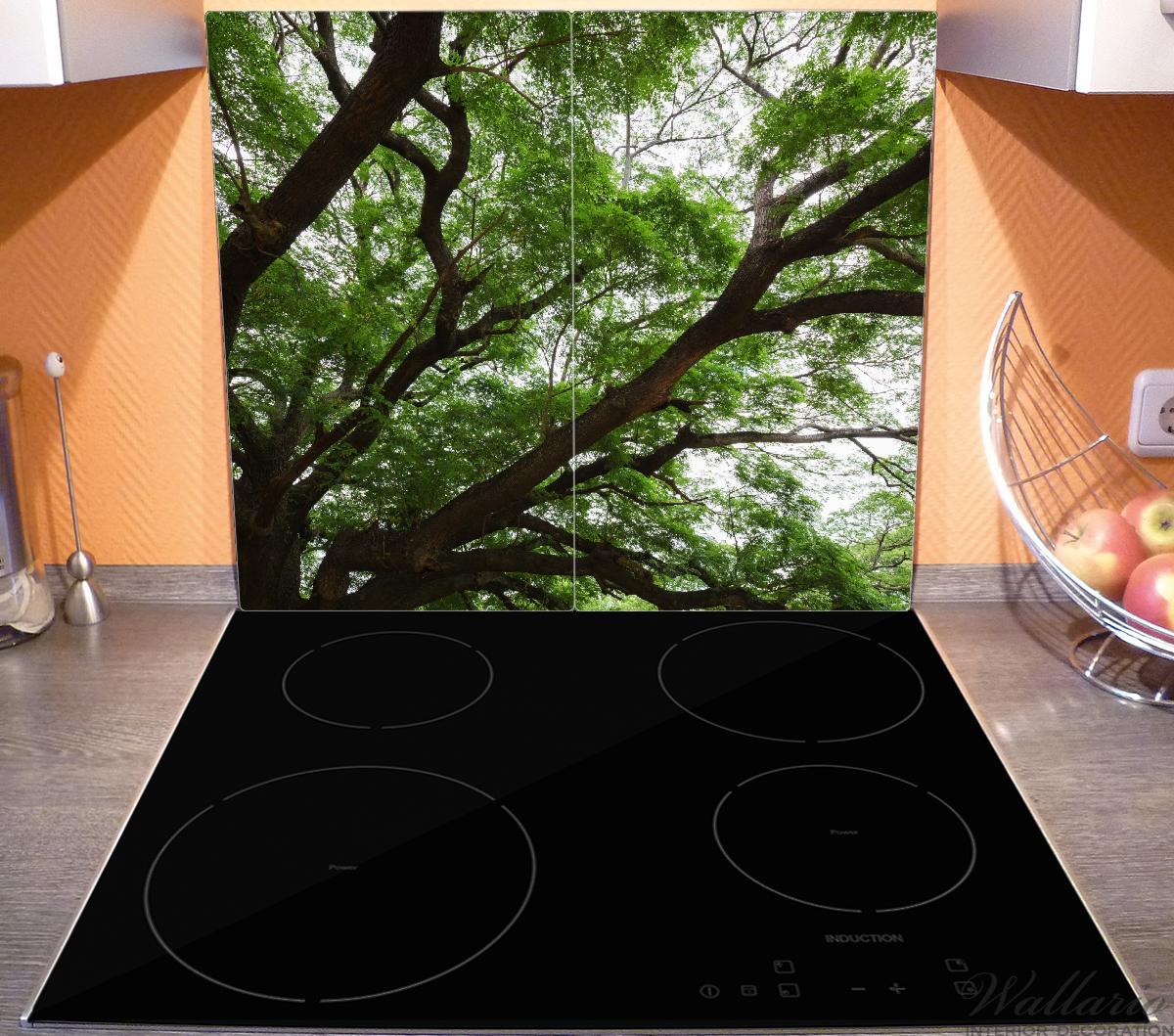 Herdabdeckplatte Gigantischer Regenbaum von unten – Bild 3