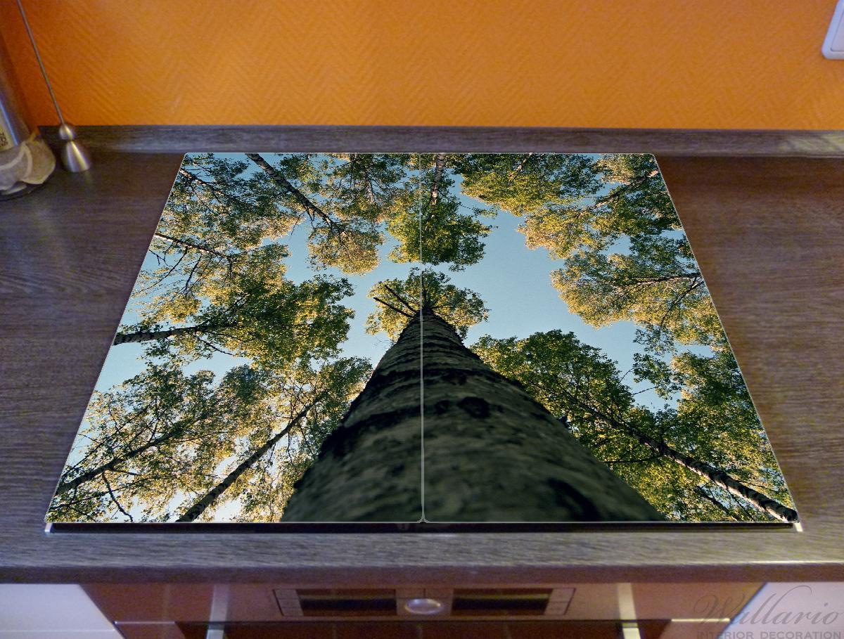 Herdabdeckplatte Birkenwald von unten betrachtet – Bild 2