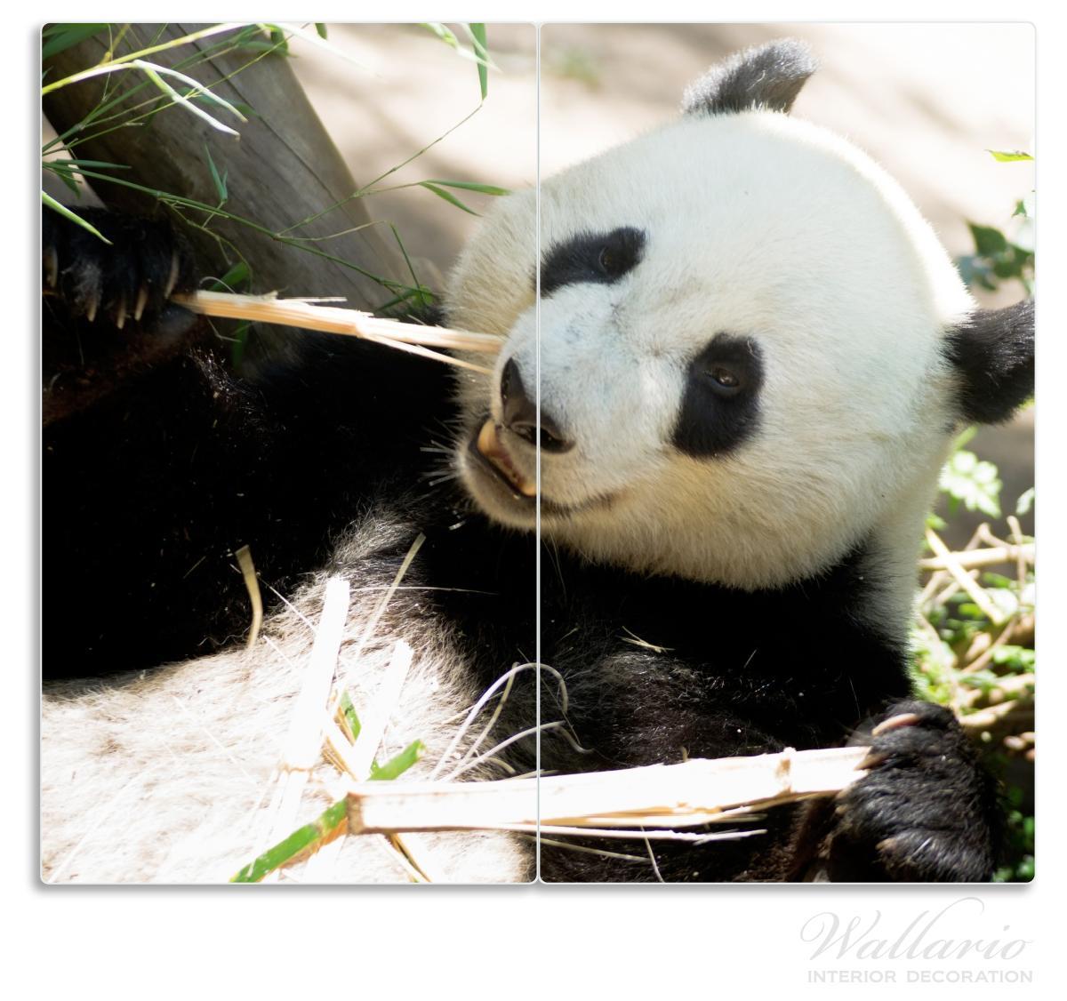 Herdabdeckplatte Panda knabbert an Bambusstücken – Bild 1