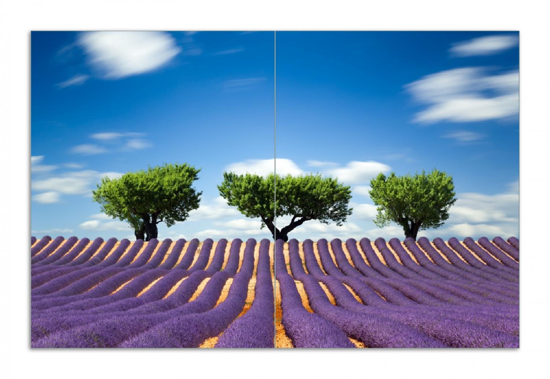 Herdabdeckplatte Abstraktes lila Blumenfeld mit Lavendel – Bild 1