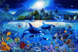 Fototapete Traumhafte Unterwasserwelt