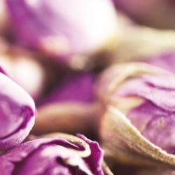 Glasbild Violette Trockenblumen – Bild 4