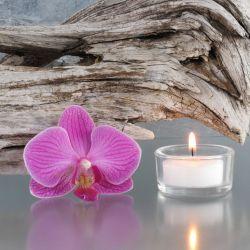 Glasbild Romantische Orchidee auf Holz – Bild 1