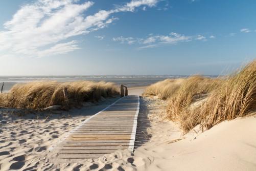 Poster Auf dem Holzweg zum Strand – Bild 1
