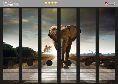Ordnerrücken Sticker Elefant bei Sonnenaufgang in Afrika