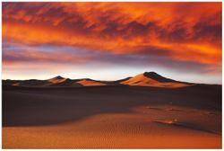 Vliestapete Sahara Wüste II - Sanddünen im Sonnenuntergang – Bild 1